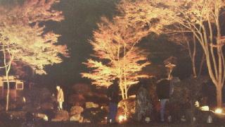yakimono2011111900001.jpg